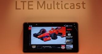 LTE multicast